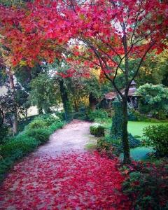 gardens-iii